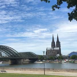 Kölner Dom vom Rheinpark aus gesehen
